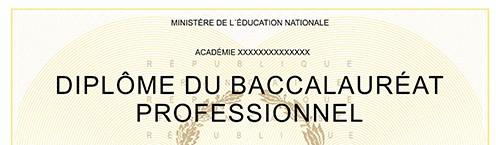 Mise à disposition des diplômes : Certificat d'Aptitude Professionnelle et Baccalauréat Professionnel